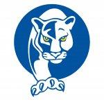 Cam Academy Panther logo